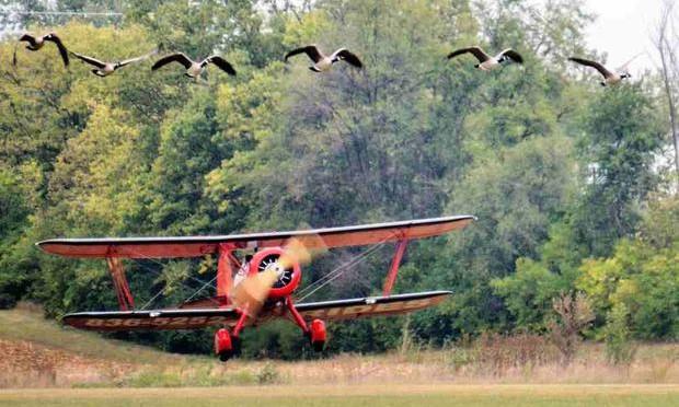WACO Fly-In