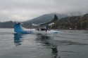 Picture of the day: SkiGull testing continues